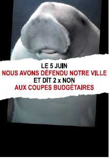 Dugong contre les coupes.JPG
